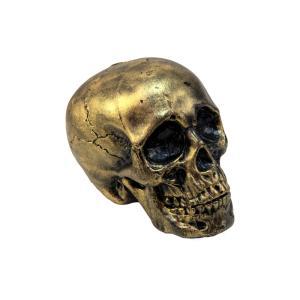 EUROPALMS Halloween Skull